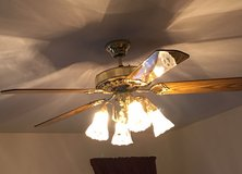 Ceiling Fan with 4 Lights in Westmont, Illinois