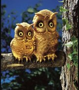 pair of Solar LED Owls in Ramstein, Germany