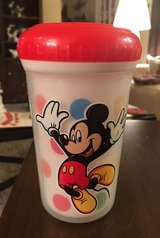 Disney World Sippy Cup in Yorkville, Illinois