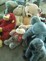 Large Stuffed Animals in Yucca Valley, California