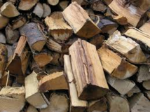 Firewood for Camping or Fire Pit in Camp Lejeune, North Carolina