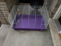 Small pet cage in Plainfield, Illinois