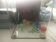 Fish tank and accessories -Reduced- in Lakenheath, UK
