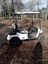 Electric Golf Cart in Livingston, Texas