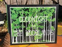NEW! Goodnight to The Woodlands in The Woodlands, Texas