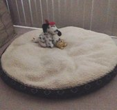 XLarge round pet bed in Yucca Valley, California