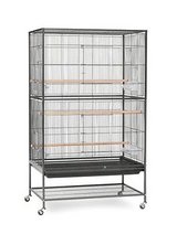 Prevue Pet Products Wrought Iron Flight Cage with Stand in The Woodlands, Texas