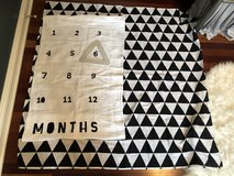 Baby Month by Month Photo Mat in St. Charles, Illinois