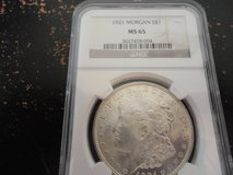 1921 ms65 morgan dollar in Fort Campbell, Kentucky