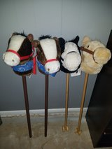 Hobby horses in Chicago, Illinois