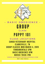 Group Dog Classes at Sango Veterinary Hospital in Fort Campbell, Kentucky