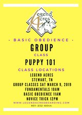 Group Dog Classes at Legend Acres Indoor Classroom in Fort Campbell, Kentucky
