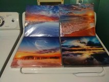 4 canvas prints (new) in Clarksville, Tennessee