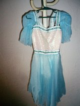 Blue princess dress costume size 8/10 in Stuttgart, GE