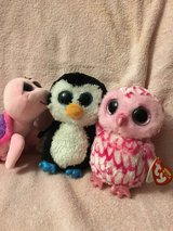 Ty The Beanie Boo's collection in Plainfield, Illinois