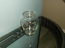 Clear Glass Vase in Plainfield, Illinois