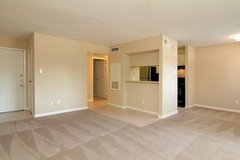 Beautiful Apartments ready For You To Move In... in Conroe, Texas