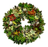 Wire Wreath Frame for Succulent Wreaths in 29 Palms, California
