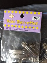 Small Crafting Barrettes in Chicago, Illinois