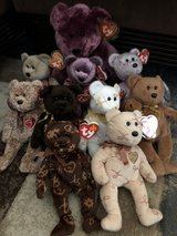 1999 -2007 Signature Beanie Babies and Beanie Buddy in The Woodlands, Texas