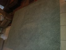 10x12 rug in Baytown, Texas