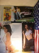 $$$   Man Cave Posters !   $$$ in Yucca Valley, California