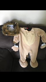 Baby Lion costume in Naperville, Illinois