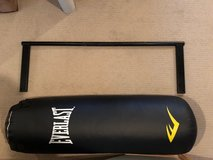 Everlast 80 lbs Punching Bag and Ceiling Mount Pull-up Bar in Naperville, Illinois