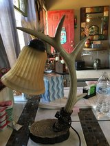 Deer horn lamp in Conroe, Texas