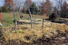 FREE DUMPING at compost facility- Spring cleaning? sod, branches,leafs in Fort Lewis, Washington