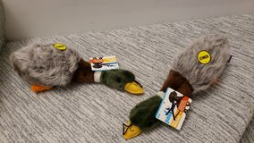 "12"" Plush Mallard Duck Chew Toy in Naperville, Illinois"