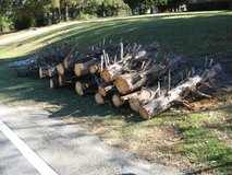15 Cypress Logs 2 to 4 ft. Long FREE - Camping or Firewood in Warner Robins, Georgia