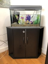 Fish Tank with Corner Stand in Ramstein, Germany