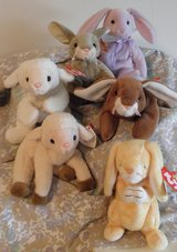 6 Beanie Babies Easter Collection in Plainfield, Illinois