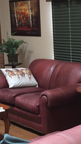 Loveseat leather couch in Bolingbrook, Illinois