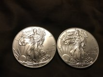 Silver eagles coins in Lockport, Illinois