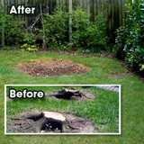 Stump grinding in Bolingbrook, Illinois