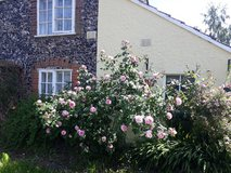 For Rent Fully furnished 250 year old traditional flint cottage in Lakenheath, UK