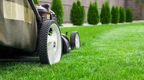 NEED CHEAP LAWN MOWING SERVICE? in Ramstein, Germany