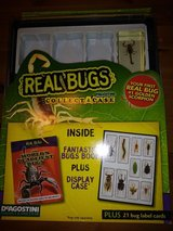 Real Bugs collect A case in Kingwood, Texas