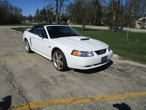 Ford Mustang GT Convertable in Tinley Park, Illinois