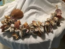 Natural shells on a rope in Clarksville, Tennessee