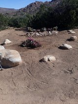 landscape services in Yucca Valley, California