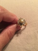 Turtle ring in Spring, Texas