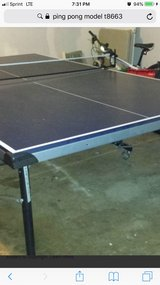 Ping Pong table in Aurora, Illinois
