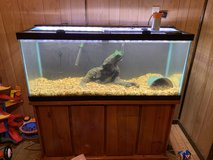 75 gallon fish tank with everything in Leesville, Louisiana