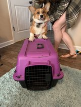 Small Pet Carrier in Clarksville, Tennessee