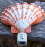LARGE Scallop Shell NIGHTLIGHT in Alamogordo, New Mexico