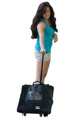 Pet Gear I-GO2 Roller Backpack, Travel Carrier, Car Seat for Cats/Dogs, Mesh Ventilation, Includ... in Aurora, Illinois