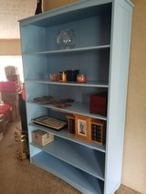 Blue Bookshelf in Fort Polk, Louisiana